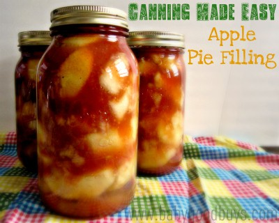 canned apple pie filling recipe