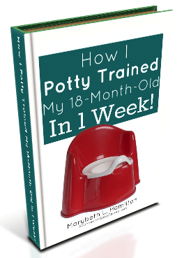 Bloggers: Get a FREE Review Copy of My How I Potty Trained My 18-Month-Old In 1 Week eBook!