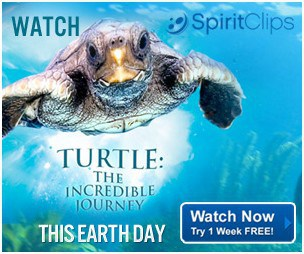 FREE Family Movies from Hallmark with FREE Trial of SpiritClips!