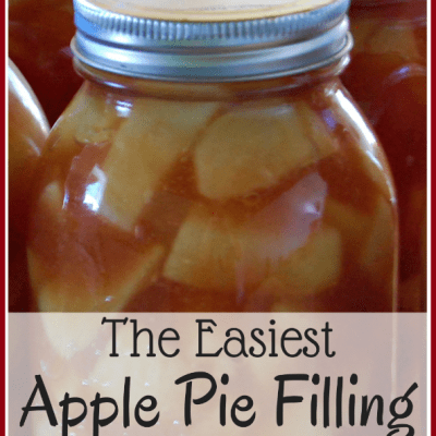 Easy Apple Pie Filling Recipe: Canning Made Simple