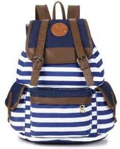blue stripe canvas backpack