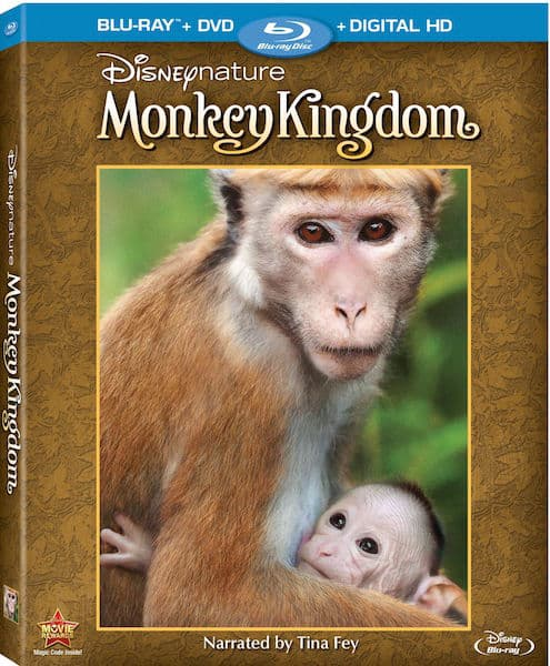 Disneynature Monkey Kingdom Review with printable activity sheets