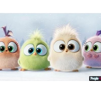 Video: Seasons Greetings from The ANGRY BIRDS Hatchlings!