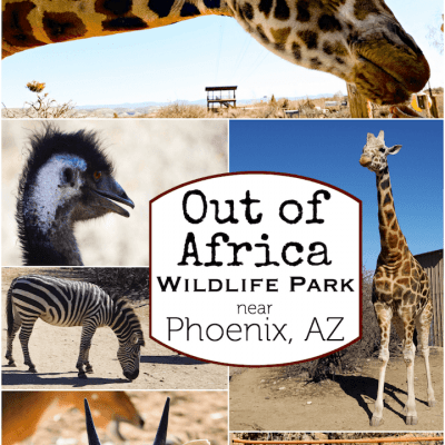 Out of Africa Wildlife Park Arizona Review
