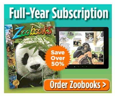 Zoobooks: Save Over 50% on Full-Year Subscription!