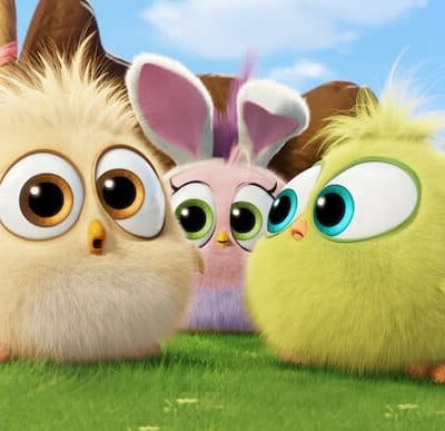 Video: The ANGRY BIRDS Hatchlings Wish You a Happy Easter!