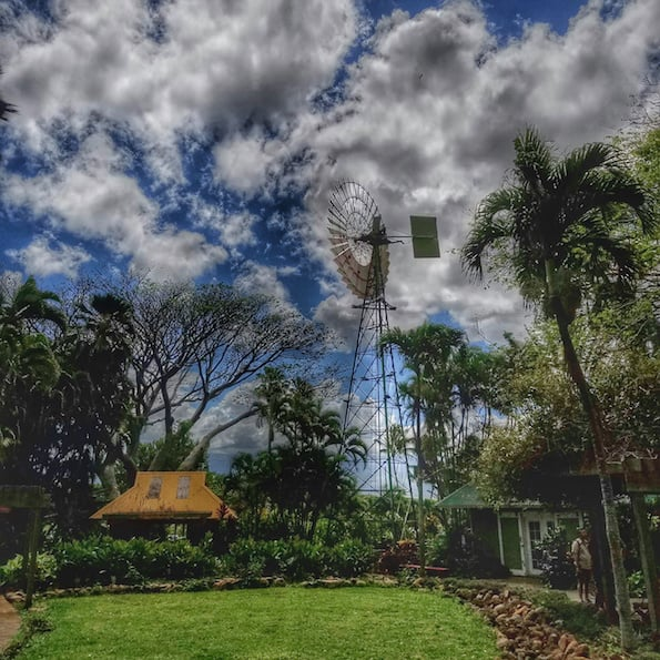 zipline at maui tropical plantation review
