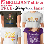 15 Shirts Only Die-Hard Disney World Fans Will Understand