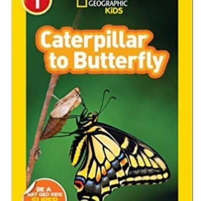 National Geographic Readers: Caterpillar to Butterfly Only $1.69, Free Shipping Eligible! {Cute Easter Basket Item!}