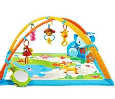 Save 60% on the Tiny Love Gymini My Musical Friends Play Gym, Free Shipping Eligible!