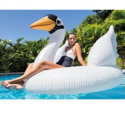 Save Up to 50% or More on Intex Inflatables (Floats and Pools), Free Shipping Eligible!