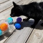 How to Make an Easy Homemade Cat Toy for Playful Cats
