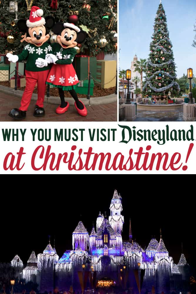 Best Disneyland Christmas