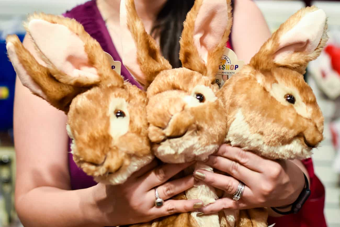 Unstuffed Peter Rabbit at Build-a-Bear Workshop