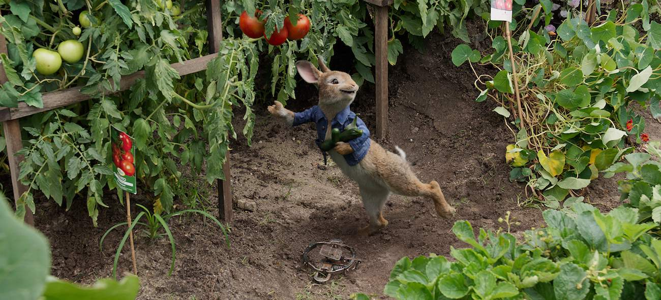 Peter rabbit in garden parent's review