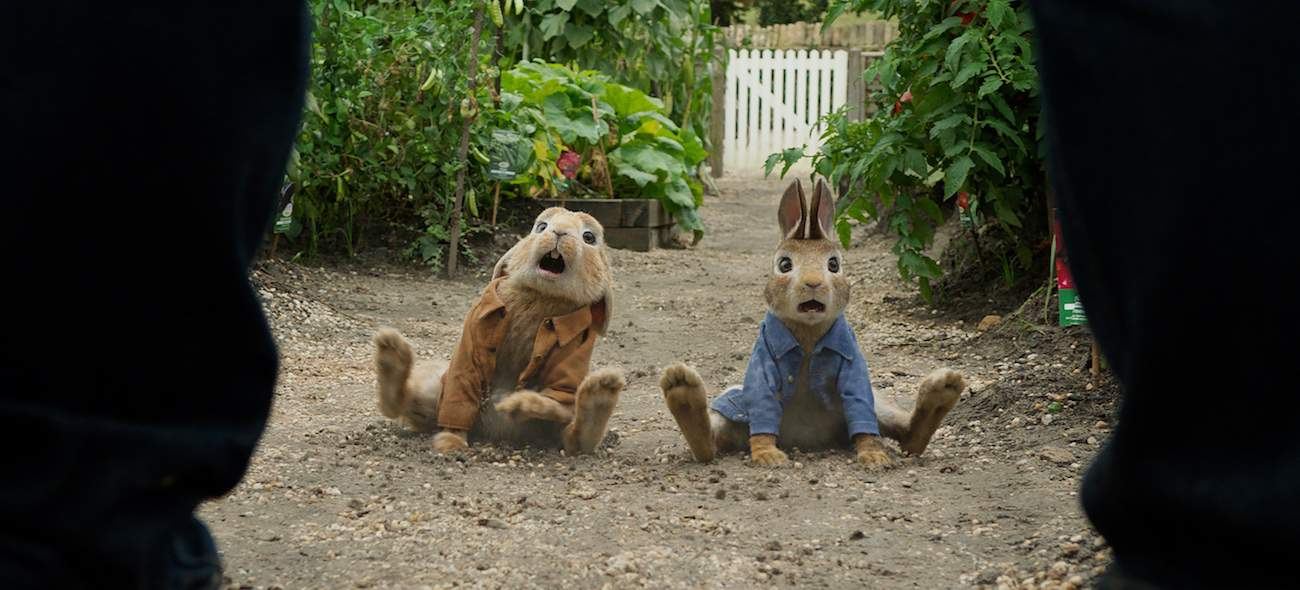 benjamin bunny and peter rabbit in Peter Rabbit movie