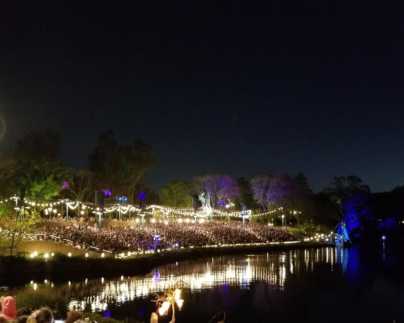 night picture of animal kingdom