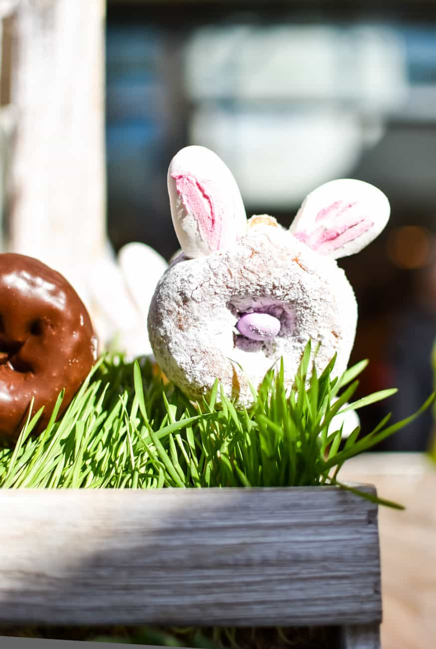 rabbit doughnut at Peter Rabbit premiere