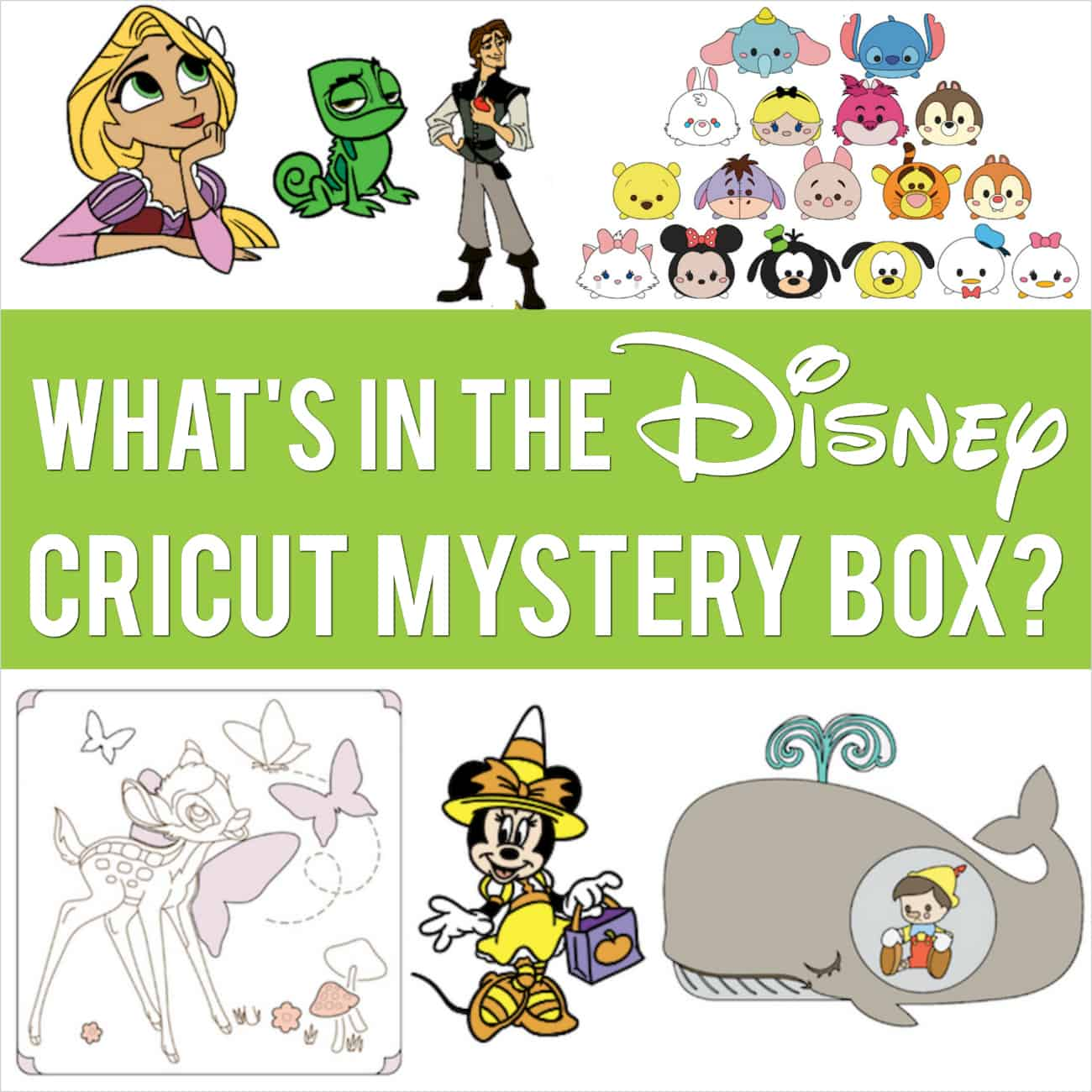Cricut Disney Mystery Box