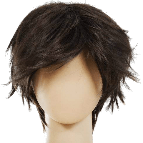 Male Short Hair Wig (Dark Brown)