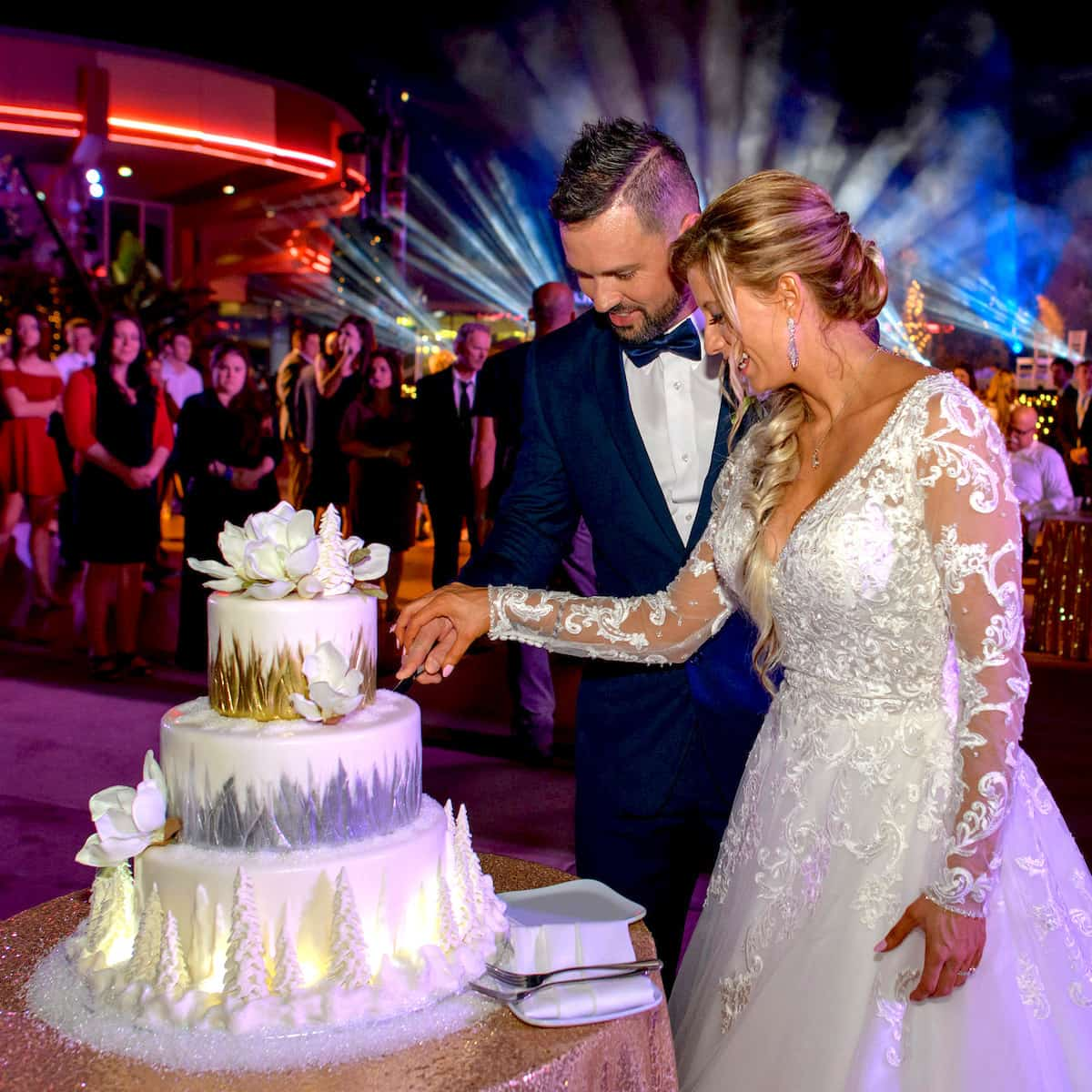 Everything You Need To Know About Wedding Cake: Disney's Fairy Tale Weddings: Holiday Edition, Everything