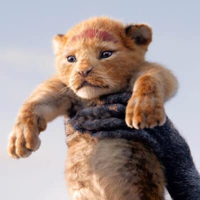 The Lion King 2019 baby simba