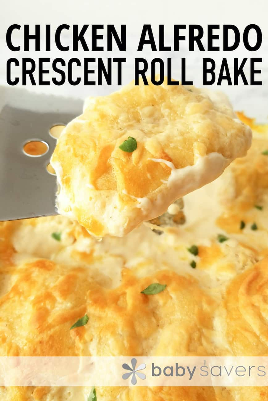 chicken alfredo crescent rolls