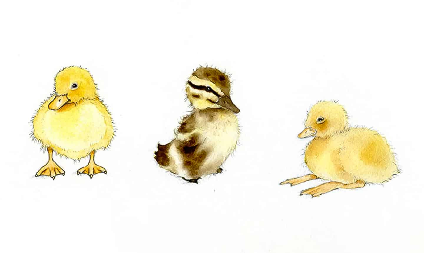 diy watercolor duckling tutorial