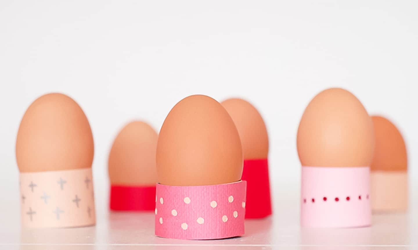 eggs in paper egg holders