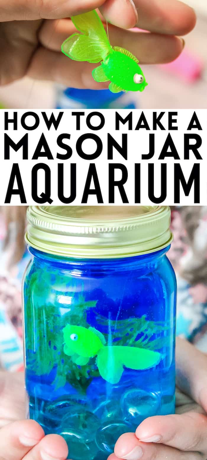 Mason jar aquarium for kids