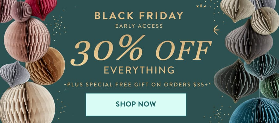 Erin Condren Black Friday banner for Early Access sale