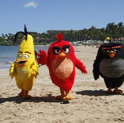 Exploring Maui as Bird Island for THE ANGRY BIRDS MOVIE