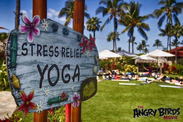 Yoga at The Four Seasons Resort Maui Angry Birds press junket