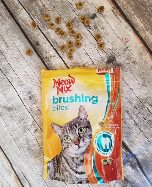 easiest way to keep your cat's teeth clean