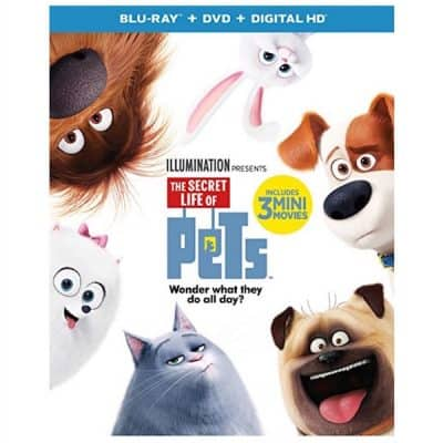 The Secret Life of Pets on Blu-ray, DVD: Amazon's #1 Bestseller!