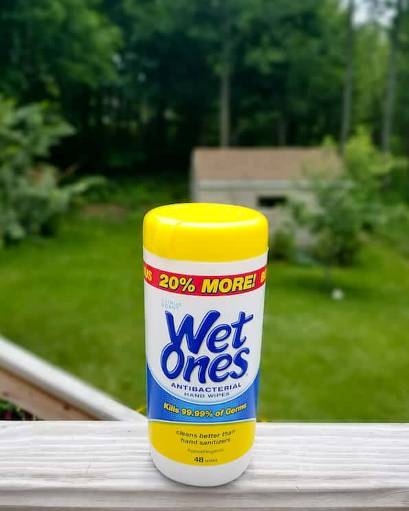 wet ones to clean popsicles